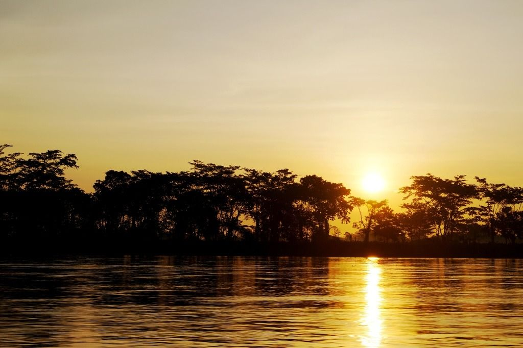 Tour the Magdalena River from Bogota
